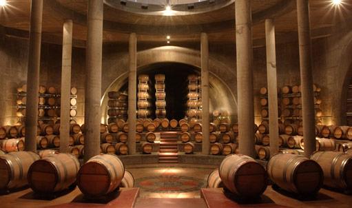 Circuito del Vino en Mendoza