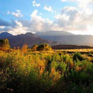 ¿Cuándo es la mejor época para visitar Mendoza?