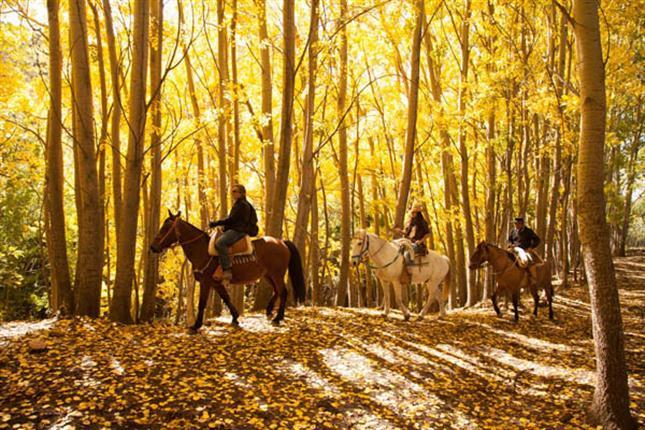 visitar Mendoza en otoño